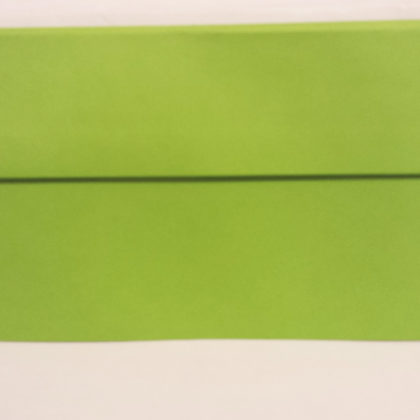 LIME GREEN DL ENVELOPES HIGH QUALITY VANGUARD GUMMED STRAIGHT FLAP